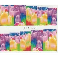 Lipdukai nagams XF1392