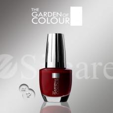 Garden Of Colour nagų lakas - 17