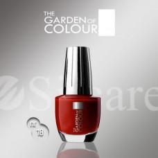 Garden Of Colour nagų lakas - 18