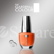 Garden Of Colour nagų lakas - 31