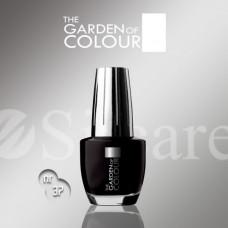 Garden Of Colour nagų lakas - 37