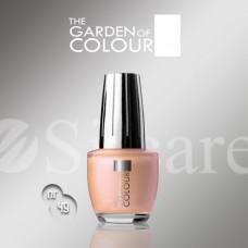 Garden Of Colour nagų lakas - 49